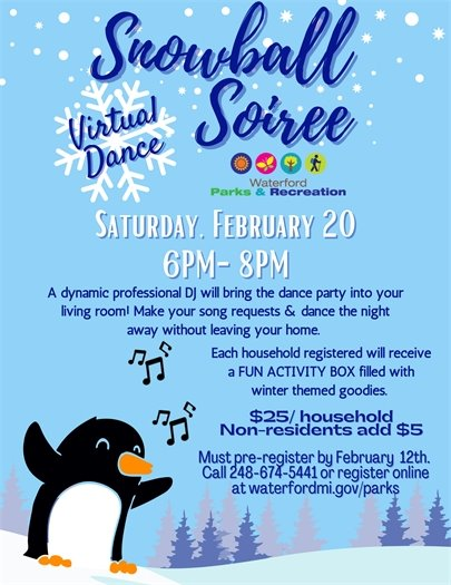 Snowball Soiree Virtual Family Dance Party